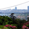 The Gulen Movement: A Shared Bridge between the U.S. and Islam