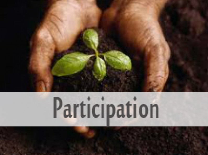 Participation in the Movement
